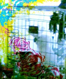 Bird & Roses